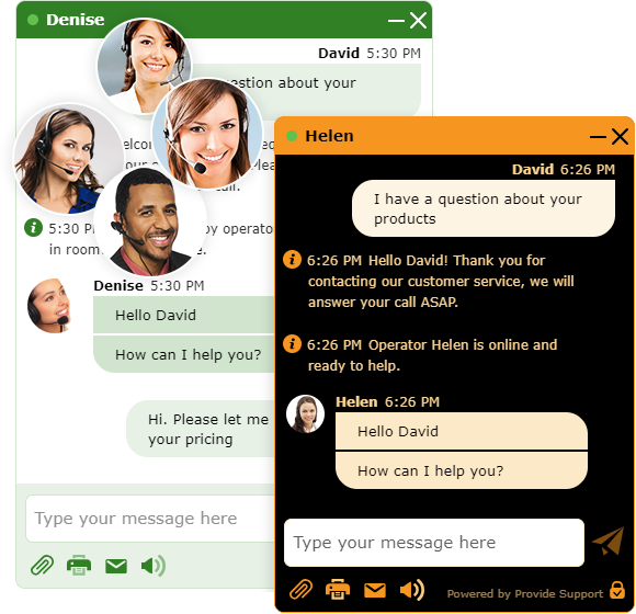 Provide Support Demo - Chat Window Customizations