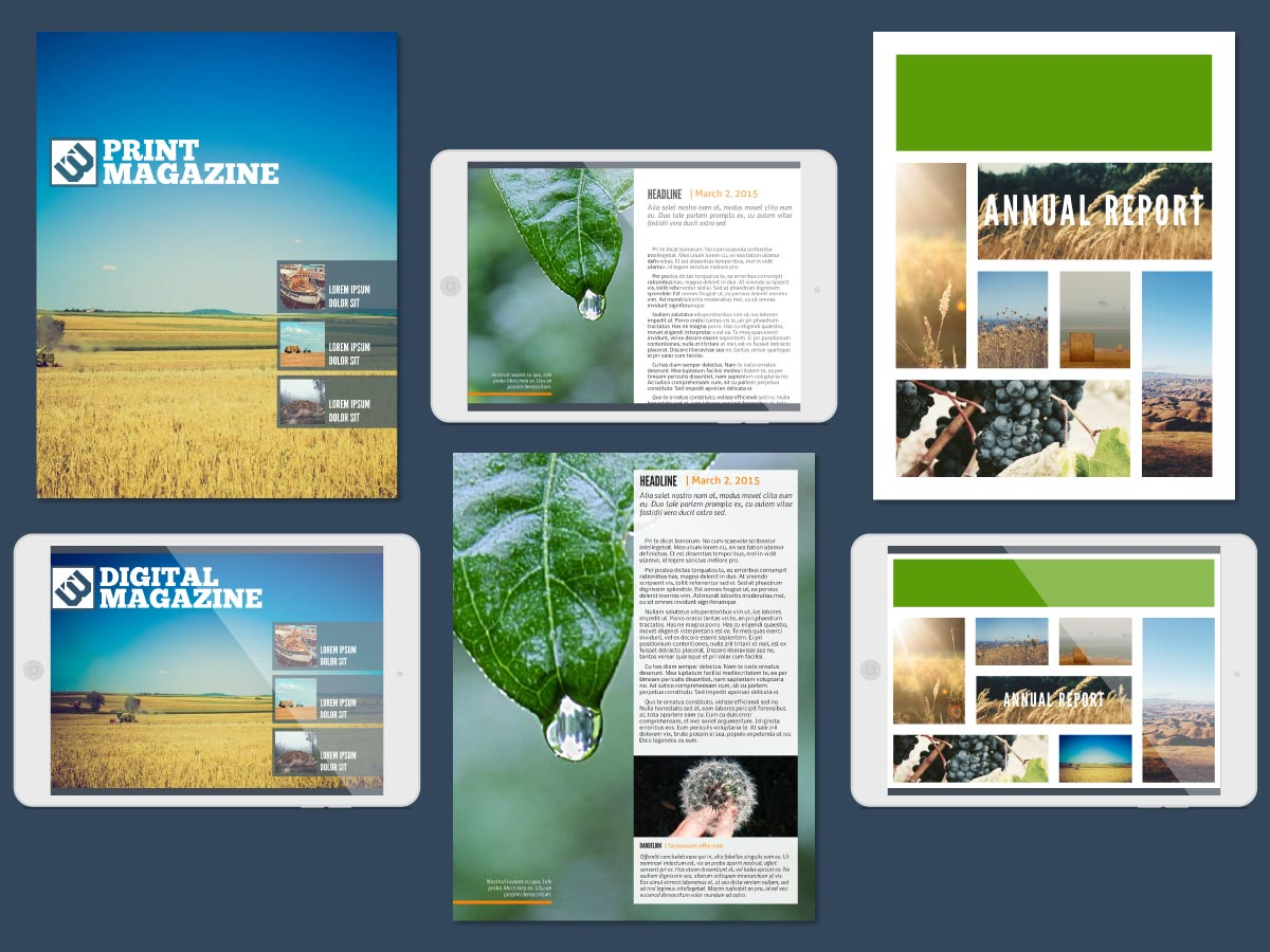 Lucidpress Demo - Magazine Templates & Annual Reports made with Lucidpress