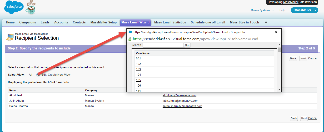 MassMailer Demo - Selecting view in Mass Email Wizard.png