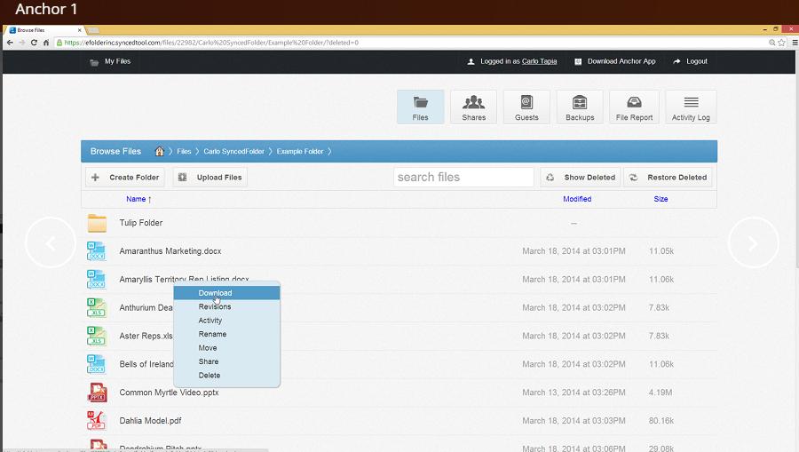 eFolder Demo - eFolder
