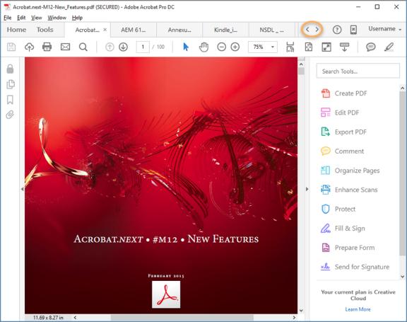 Adobe Acrobat DC Demo - Adobe+Acrobat+screenshot+.png