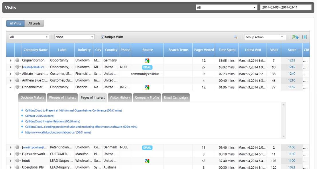 CallidusCloud Marketing Automation Demo - Visitors