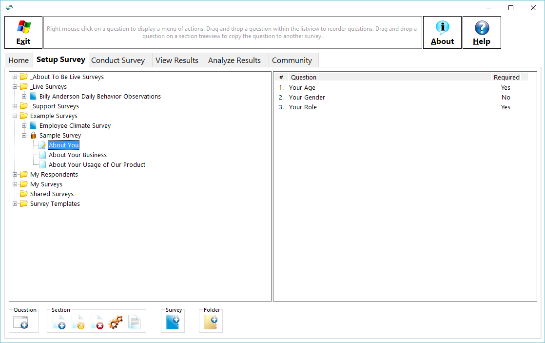 SurveyGold Demo - The Setup Survey tab provides the ability to create and maintain surveys using a familiar view.