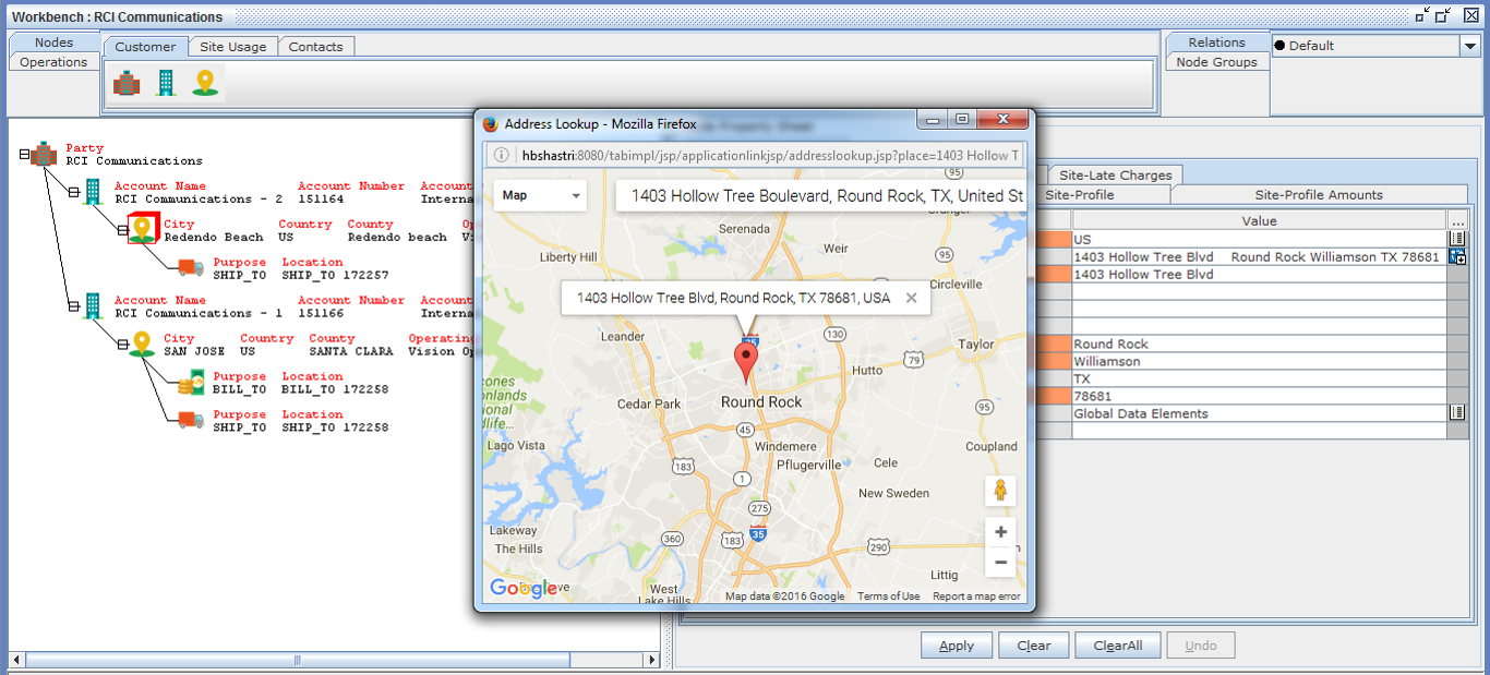 Triniti Master Data Management Demo - Real time Integration with Google Maps for Addresses