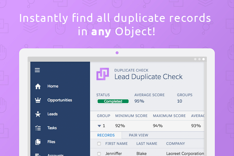 Duplicate Check for Salesforce Demo - Find duplicates