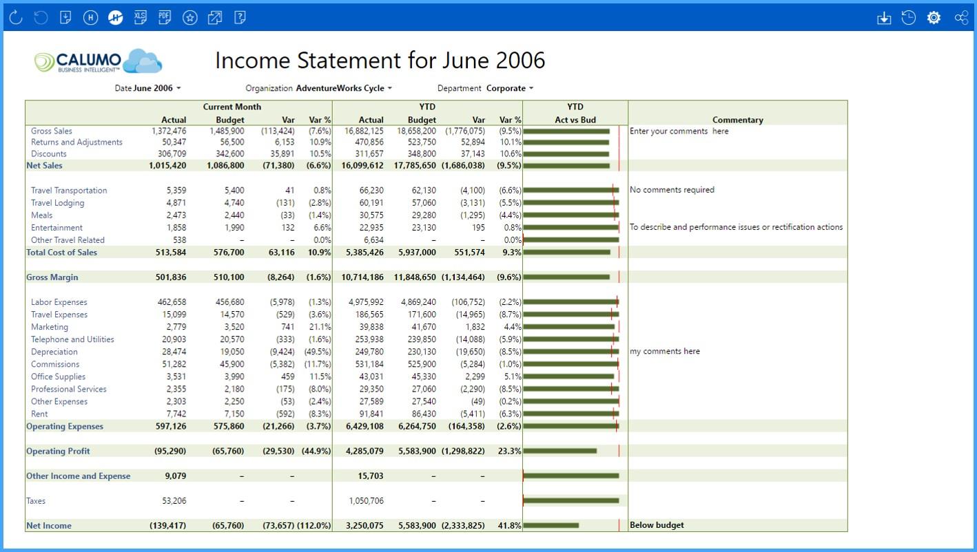 CALUMO Demo - Financial Statements