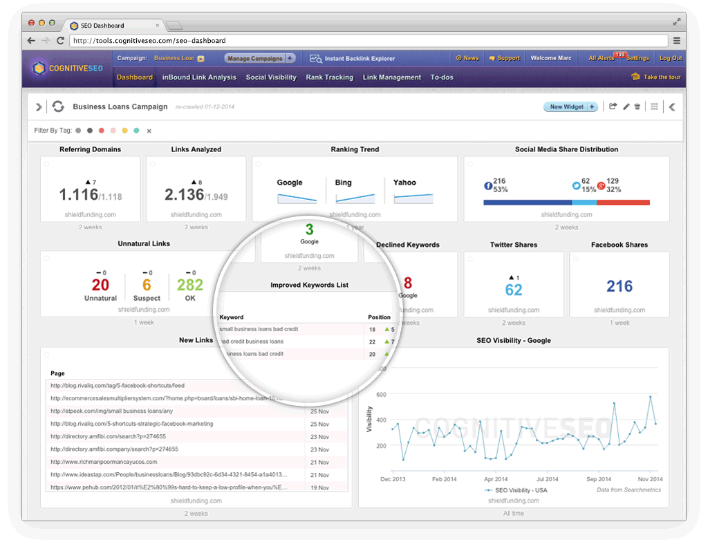 cognitiveSEO Demo - Get Essential Data for Your Business at a Glance