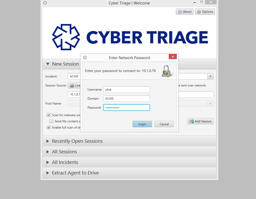 Cyber Triage Demo - Remote Host