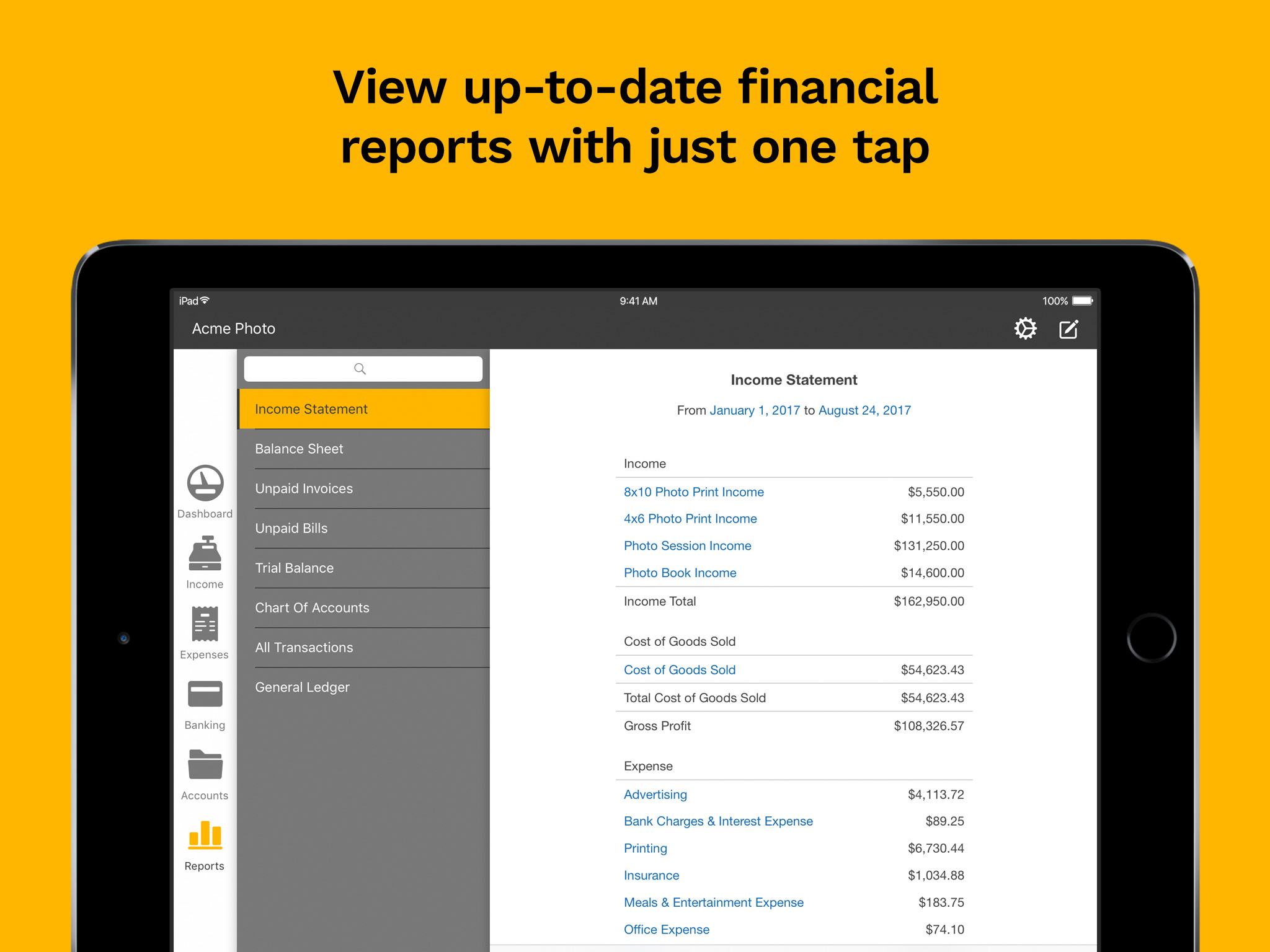 Kashoo Demo - Kashoo Financial Reports (iPad app)