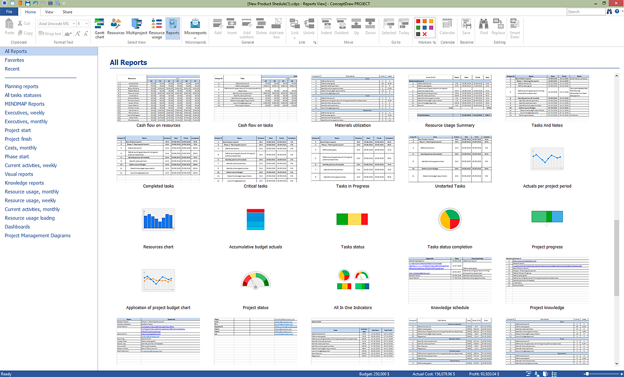 ConceptDraw PROJECT Demo - Reporting System