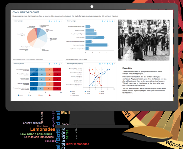 DataLion Demo - DataLion Report