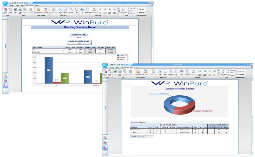 WinPure Clean & Match Demo - Reporting