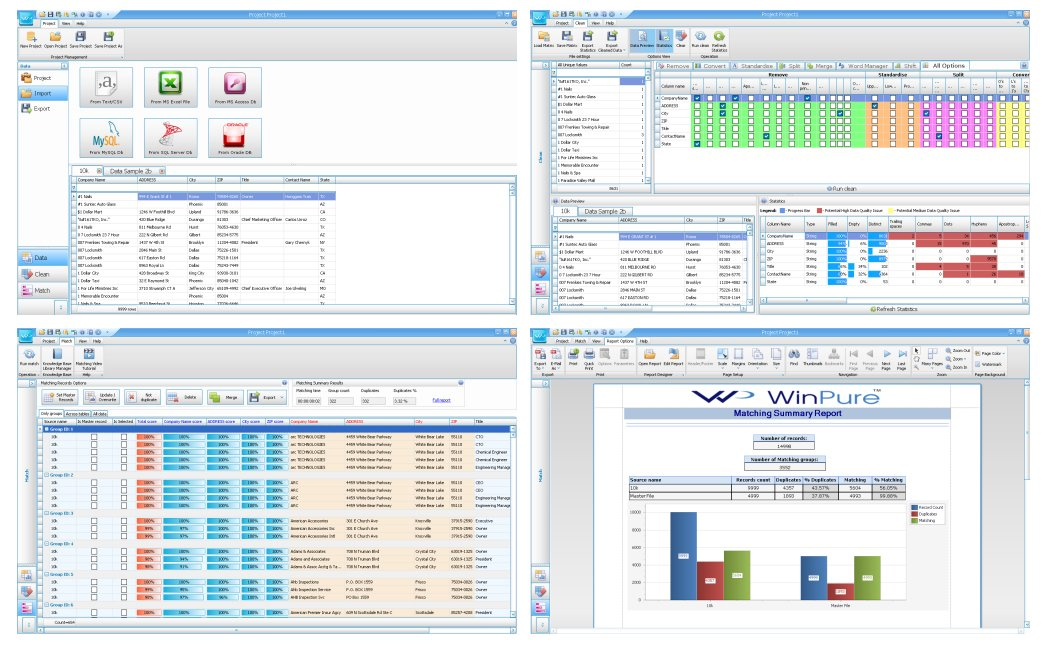 WinPure Clean & Match Demo - Importing, Cleaning, Matching & Reporting