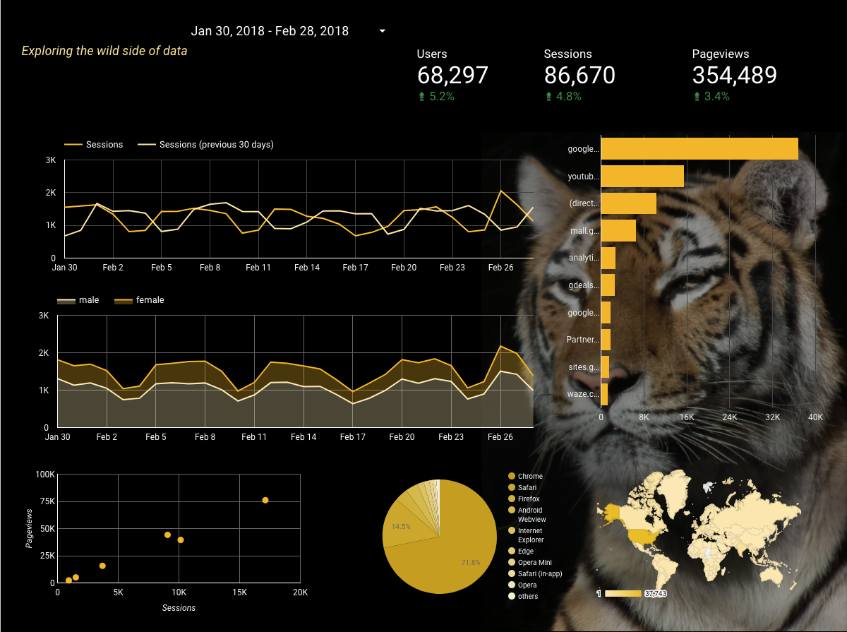 Google Data Studio Demo - Sample Wild Nature Website Google Analytics Report
