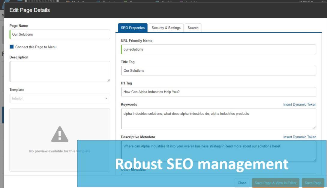 Bridgeline Content Demo - SEO-screenshot.JPG