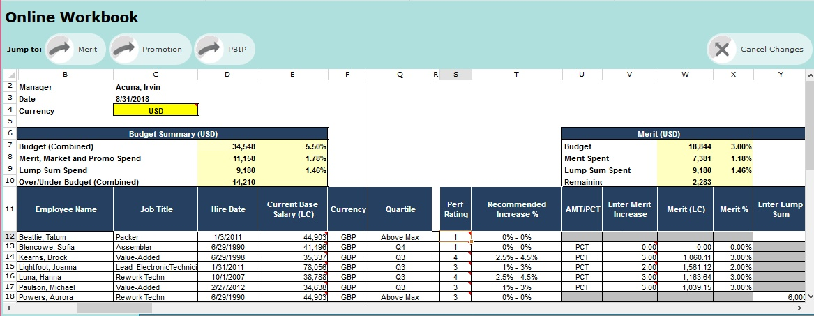 CompensationXL Demo - Managers Online Planning Interface
