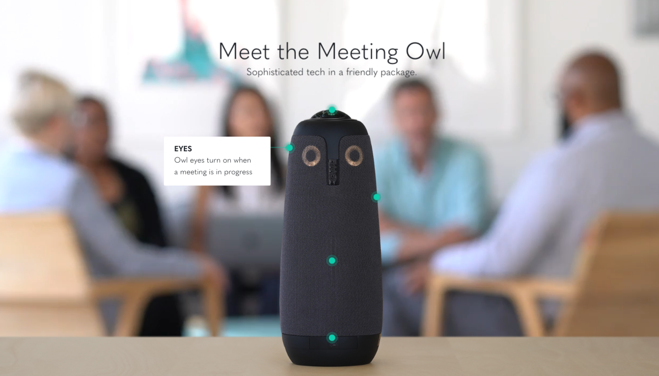 Salted Stone Demo - The Meeting Owl Product Page