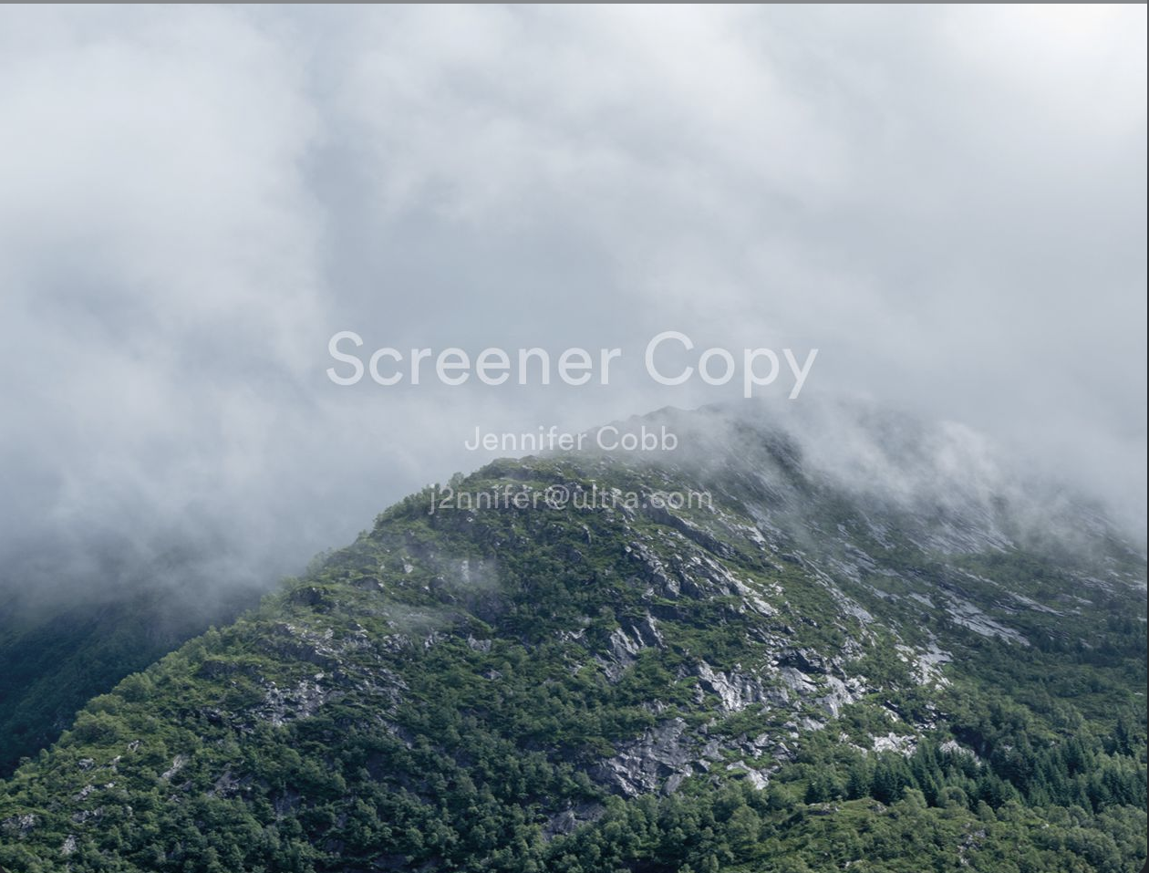 MediaSilo Demo - Watermark your pre-release content within 20 seconds of playback