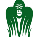 Gorilla Budgeting