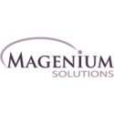 Magnesium Solutions Implementation Services