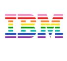 IBM InfoSphere Information Server