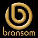 Bransom Live Sales Analyser