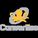 Convertise Programmatic Ad Monetization SSP