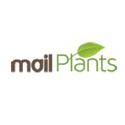 mailplants