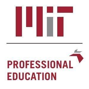 MIT Professionals, Inc.