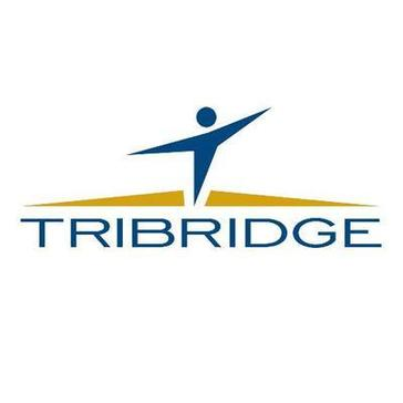 Tribridge Consulting Reviews