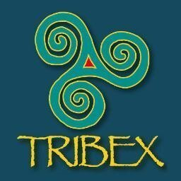 Tribex Consulting