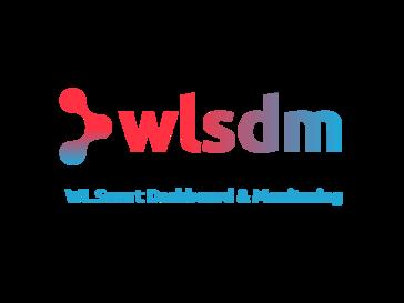 WLSDM
