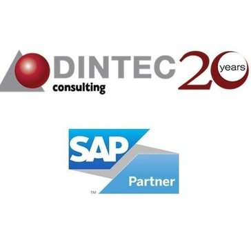 Dintec Consulting