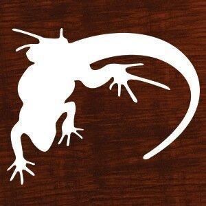 Lounge Lizard Worldwide, Inc.