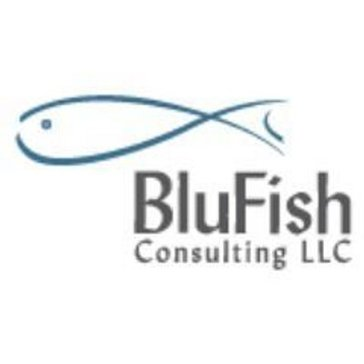 BluFish Consulting Reviews