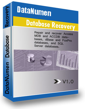 DataNumen Database Recovery