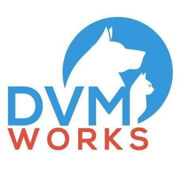 DVMWorks