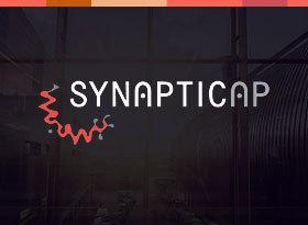Synaptic AP Reviews