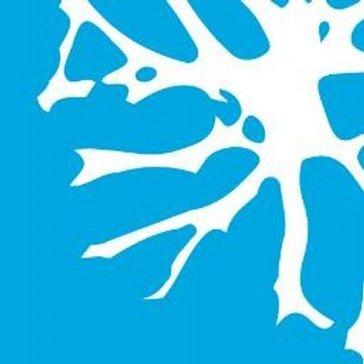 Brainspace Discovery 5 Reviews