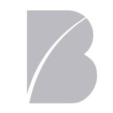 Beeline Reviews
