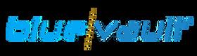BlueVault Reviews