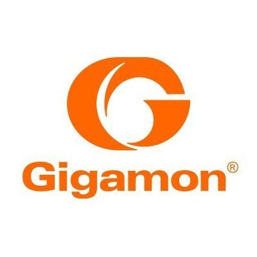 GigaSECURE Reviews
