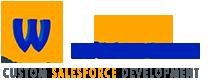 Salesforce Development Reviews