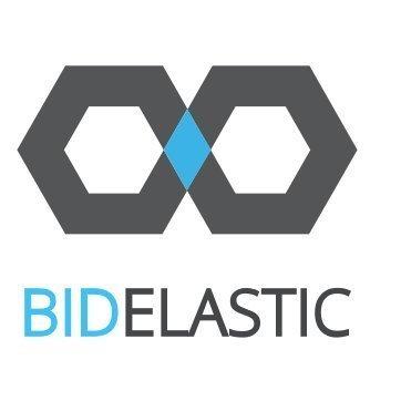 BidElastic Reviews