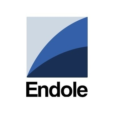 Endole Insight Reviews