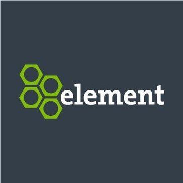 Element Strategic fleet management consulting