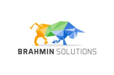 Brahmin Solutions Reviews