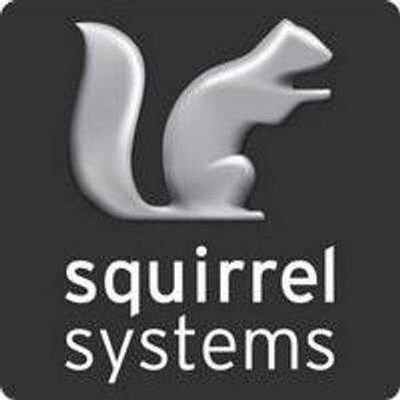 Squirrel in a Box