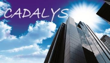 Cadalys, Inc. Reviews