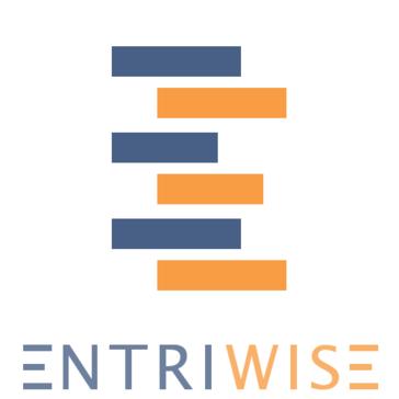 Entriwise Pricing